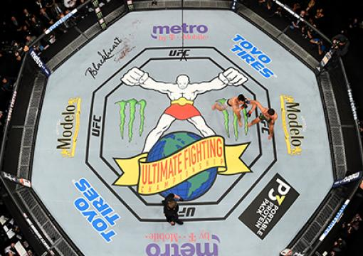 UFC 25th Anniversary Octagon