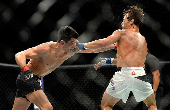 INGLEWOOD, CA - JUNE 04: Dominick Cruz and Urijah Faber exchange blows during the UFC 199 event at The Forum on June 4, 2016 in Inglewood, California.  (Photo by Brandon Magnus/Zuffa LLC/Zuffa LLC via Getty Images)