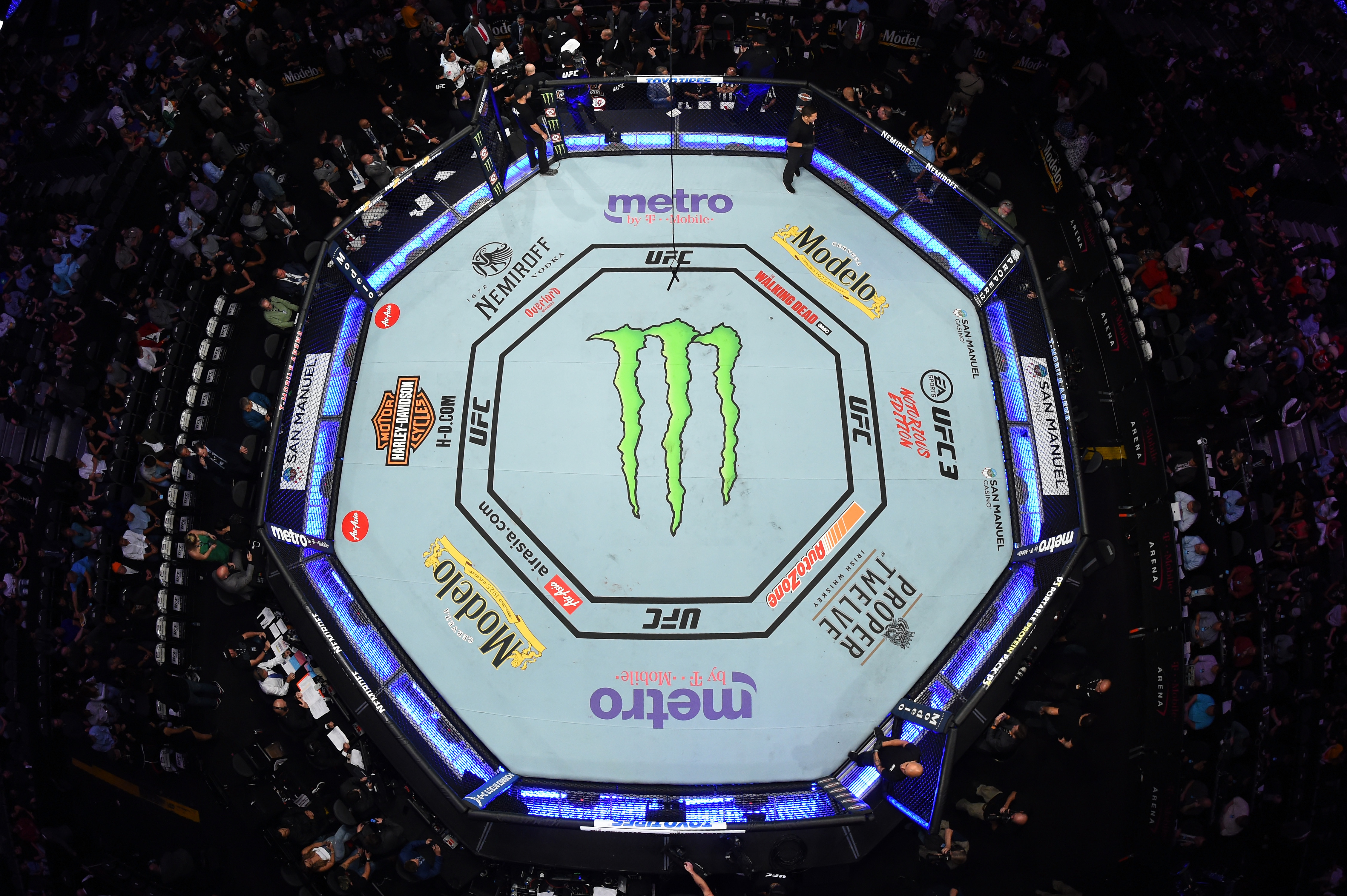 The Octagon Ufc