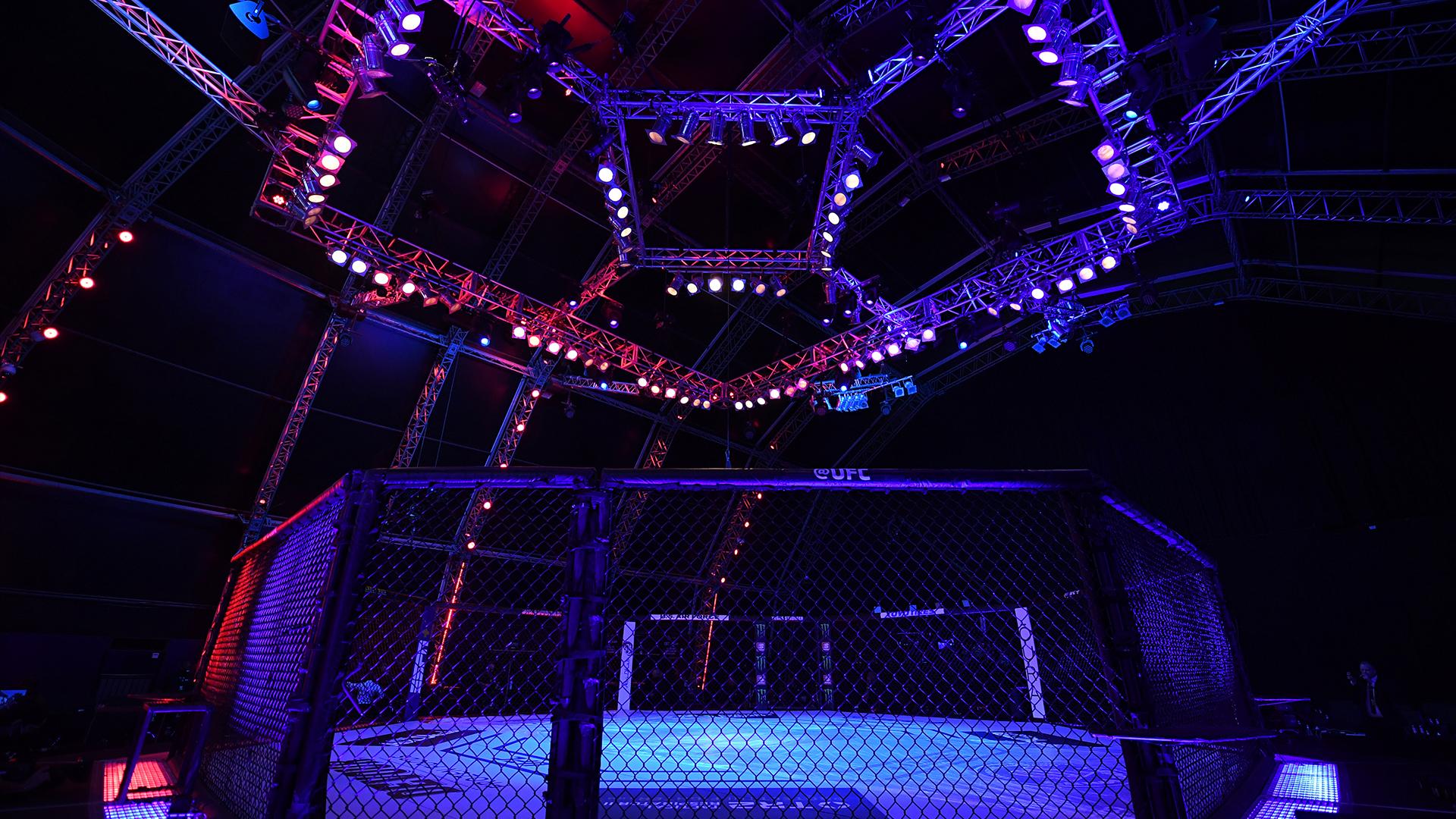 Confira todos os resultados do UFC 254