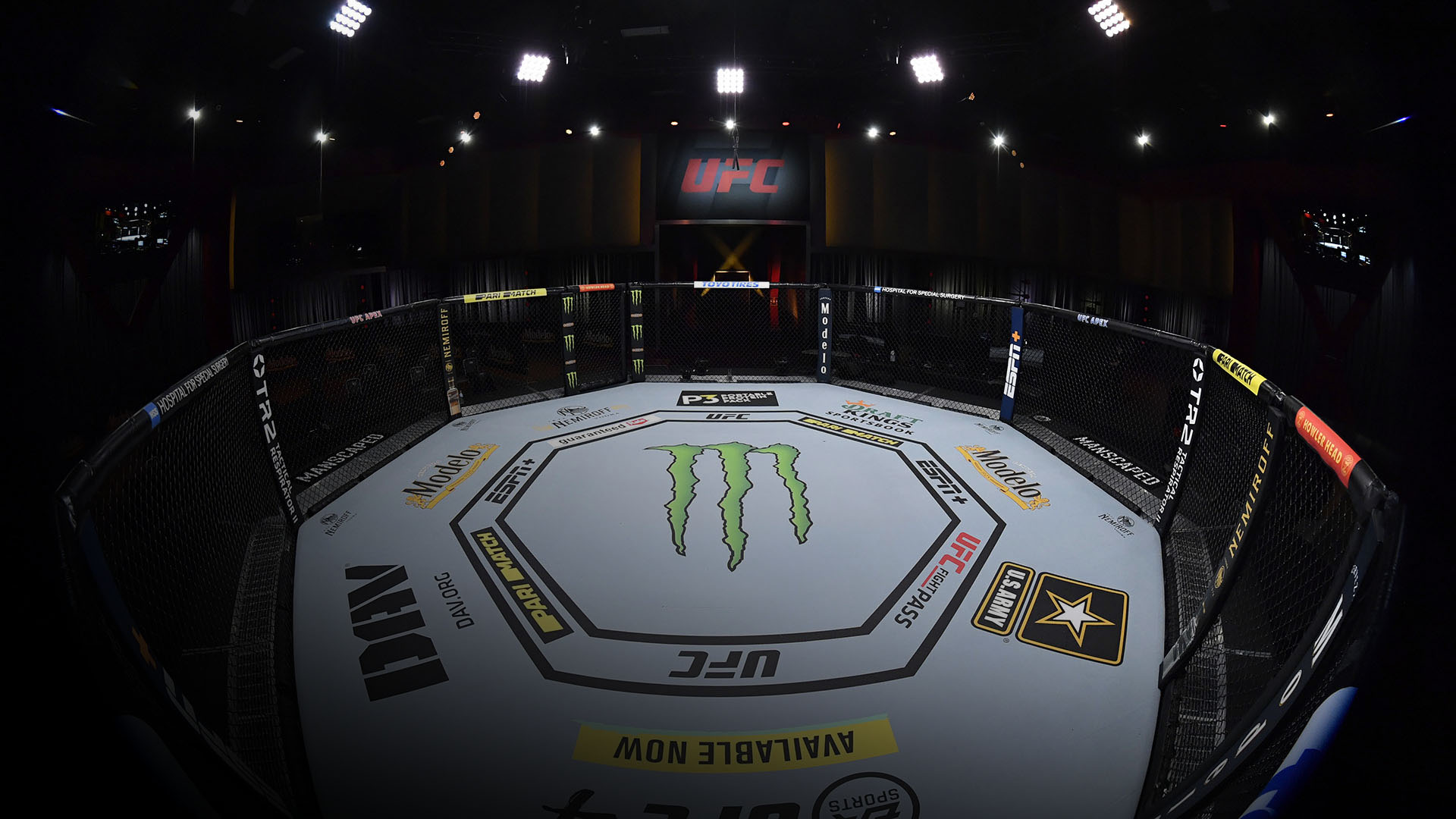 A general view of the Octagon prior to the UFC 255 event at UFC APEX on November 21, 2020 in Las Vegas, Nevada. (Photo by Jeff Bottari/Zuffa LLC)