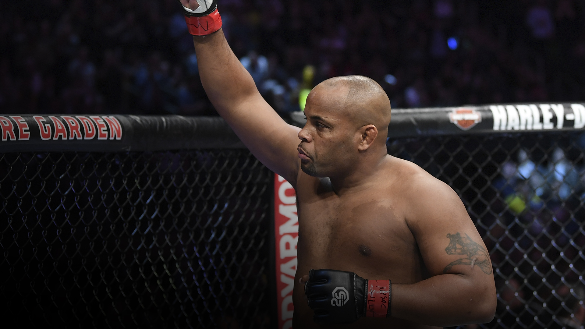 Daniel Cormier prepares to fight Derrick Lewis in their UFC heavyweight championship bout during the UFC 230 event inside Madison Square Garden on November 3, 2018 in New York, New York. (Photo by Jeff Bottari/Zuffa LLC)