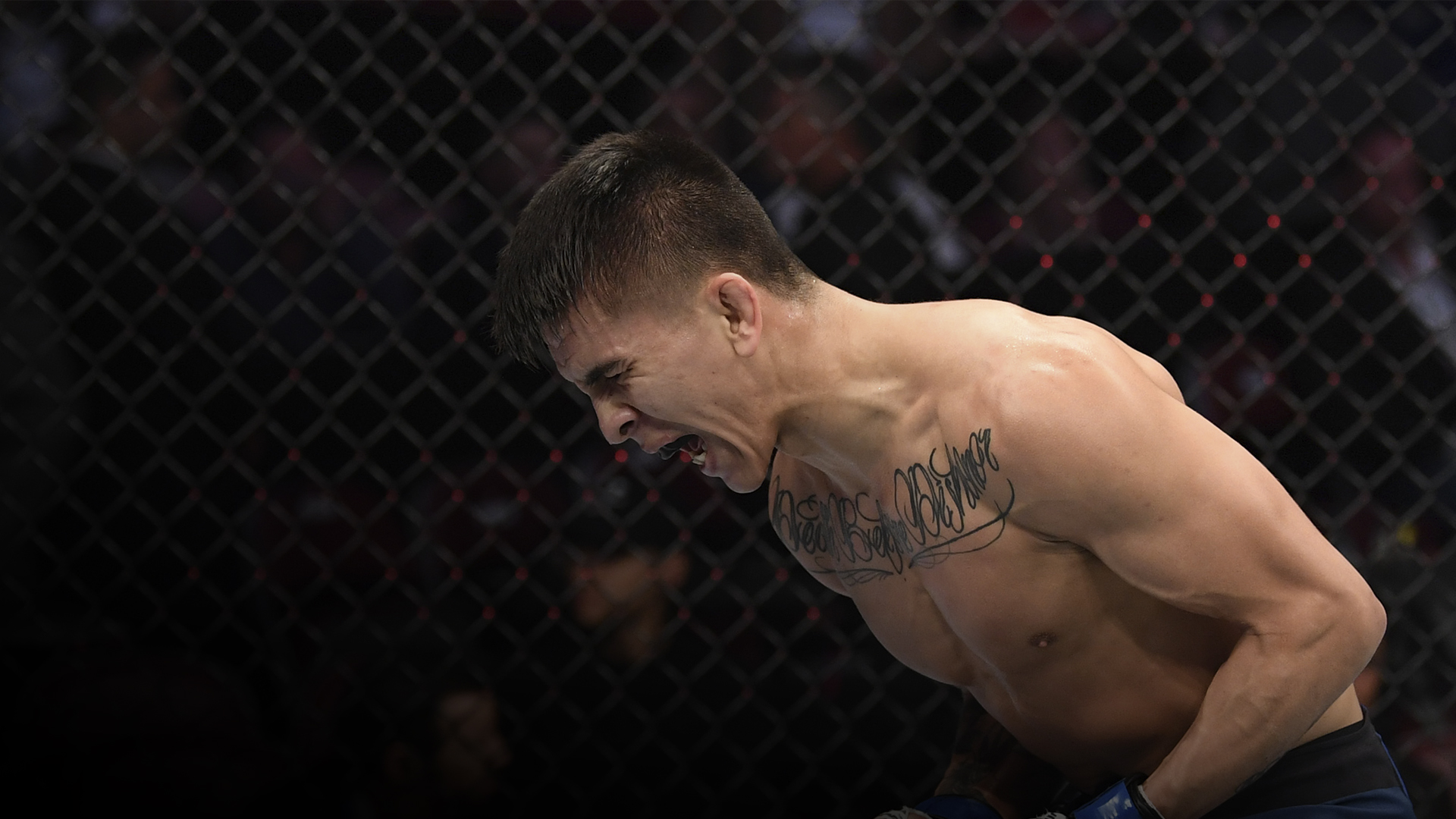 Mario Bautista celebrates his TKO victory over Miles Johns in their bantamweight bout during the UFC 247 event at Toyota Center on February 08, 2020 in Houston, Texas. (Photo by Josh Hedges/Zuffa LLC)