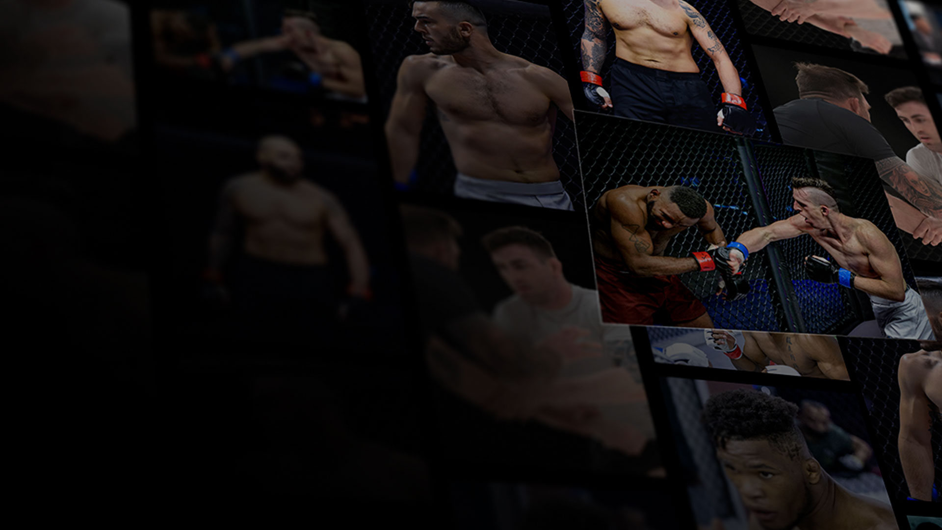 UFC Fight Pass mid-year award graphic