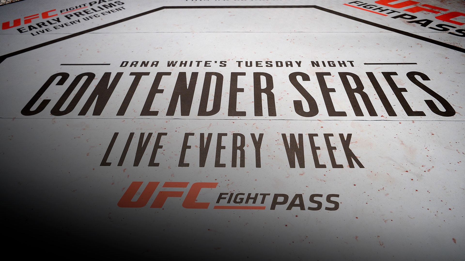A general view of the Octagon during Dana White's Tuesday Night Contender Series at the TUF Gym on July 10, 2018 in Las Vegas, Nevada.