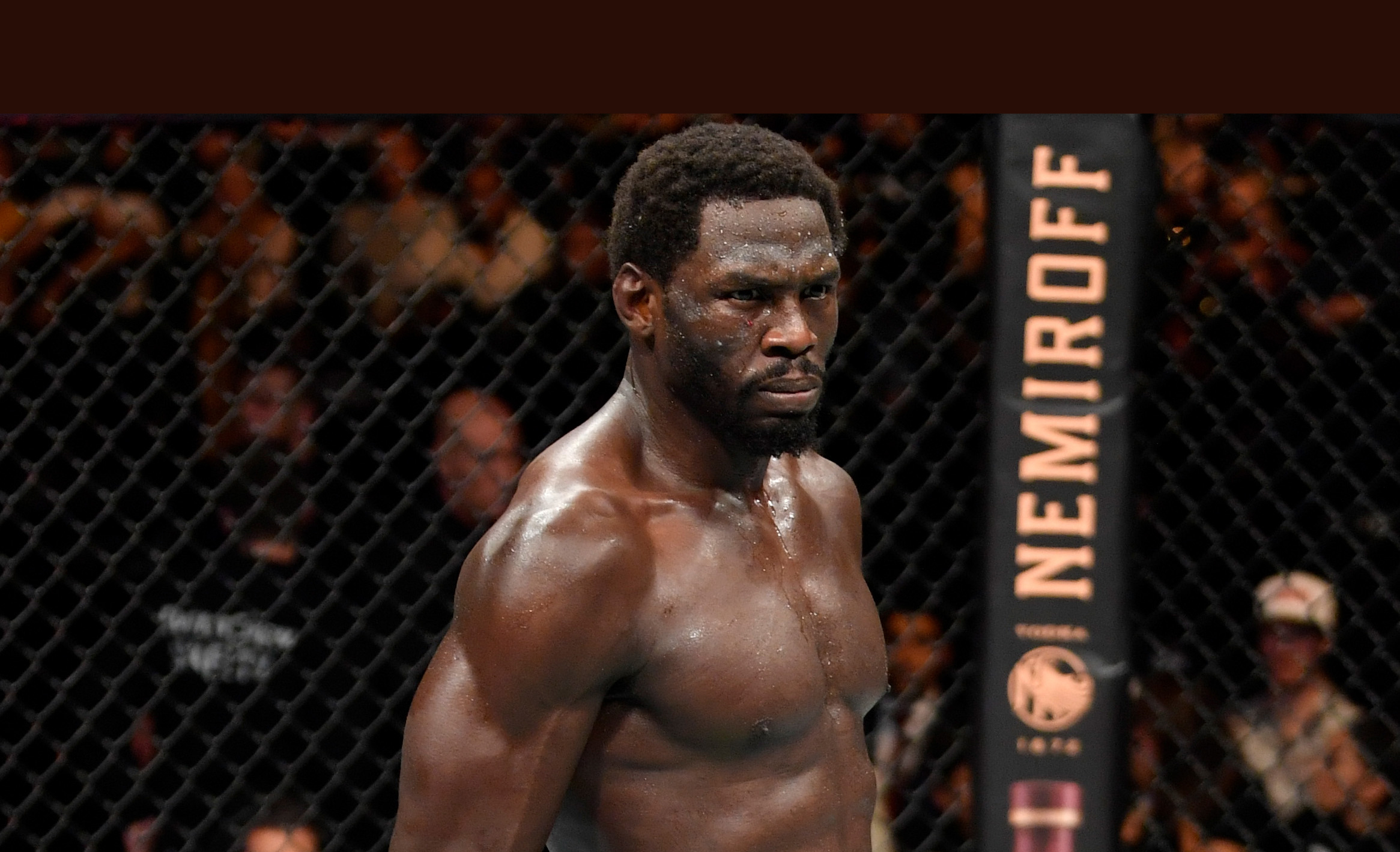 HERO Jared Cannonier celebrates his TKO victory over Jack Hermansson of Sweden in their middleweight bout during the UFC Fight Night