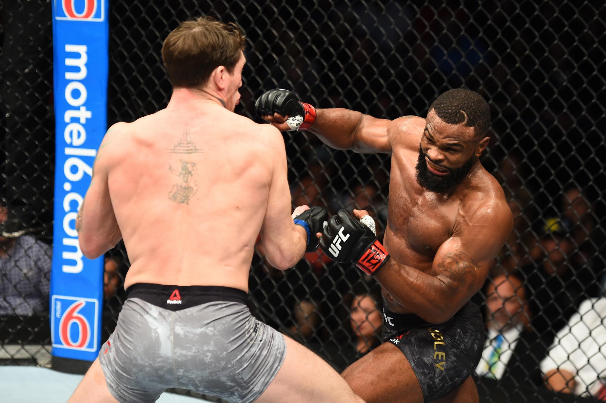 UFC 228   UFC