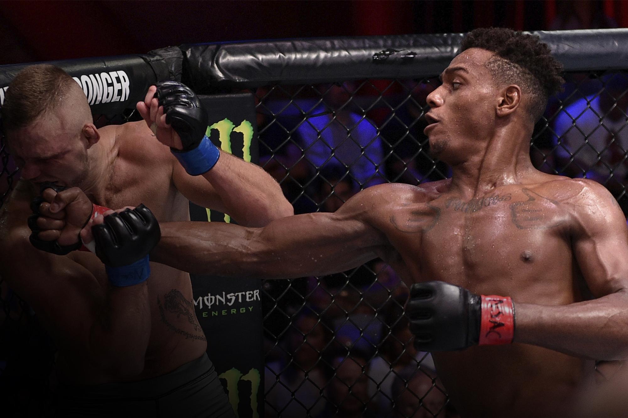 Jamahal Hill Always Expected Success   UFC