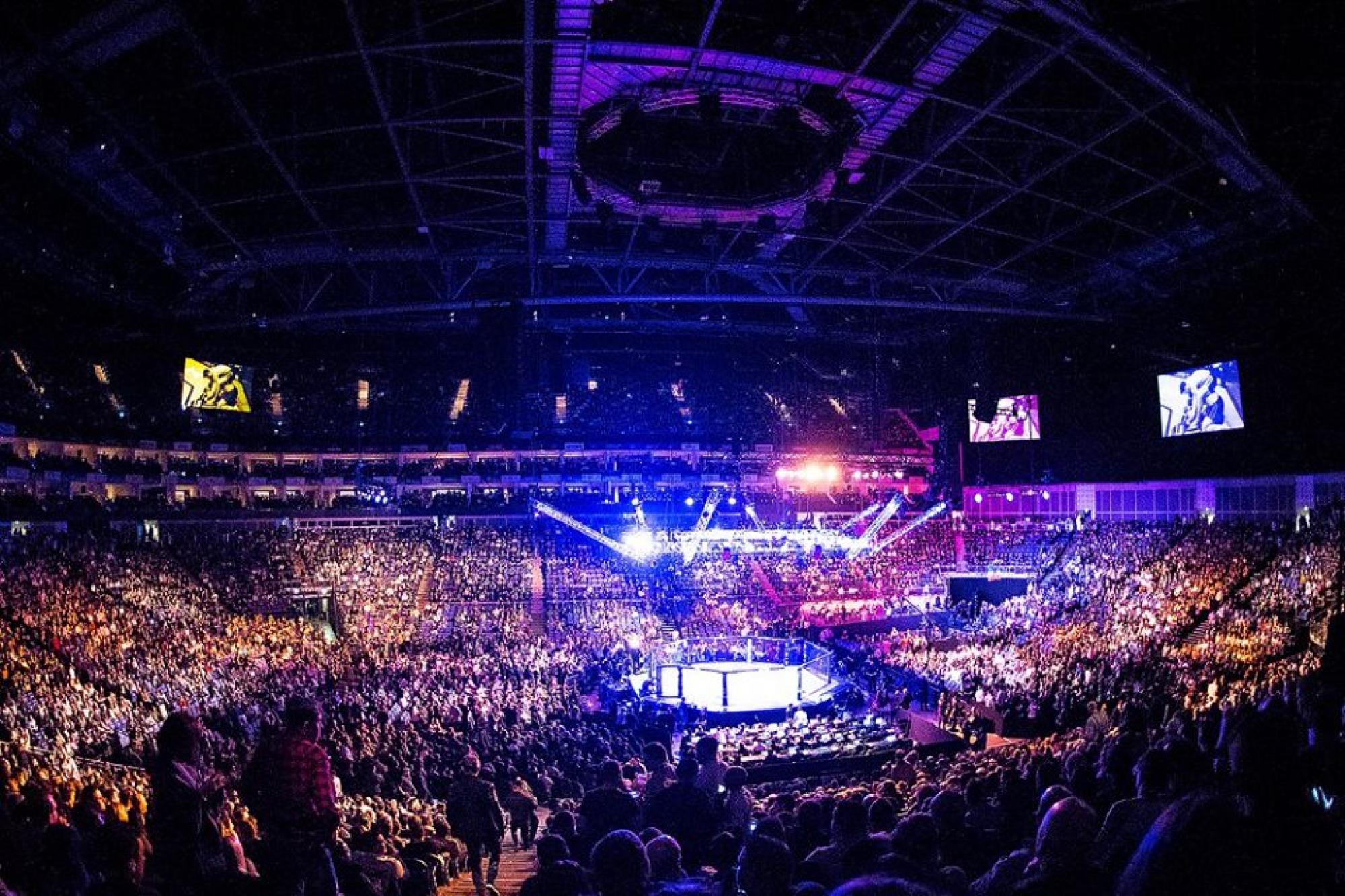 UFC Releases Octagon Canvas Partners For UFC 236 | UFC