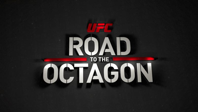UFC Fight Night Holm vs Shevchenko Road to the Octagon logo