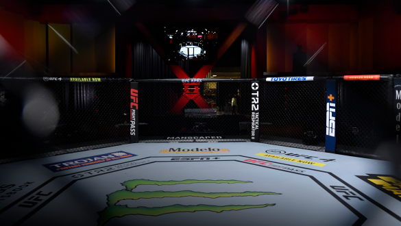 A general view of the Octagon prior to the UFC 256 event at UFC APEX on December 12, 2020 in Las Vegas, Nevada. (Photo by Jeff Bottari/Zuffa LLC)
