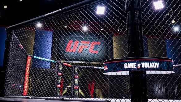 Confira todos os resultados do UFC Vegas 30