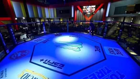 Confira os resultados do UFC Vegas 36