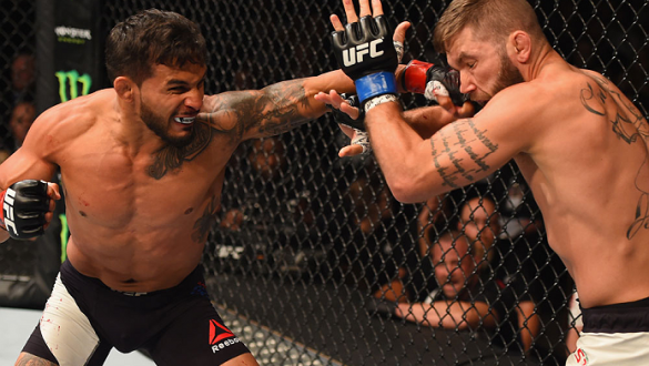 LAS VEGAS, NV - JULY 11:  (L-R) Dennis Bermudez punches Jeremy Stephens in their featherweight fight during the UFC 189 event inside MGM Grand Garden Arena on July 11, 2015 in Las Vegas, Nevada.  (Photo by Josh Hedges/Zuffa LLC/Zuffa LLC via Getty Images)