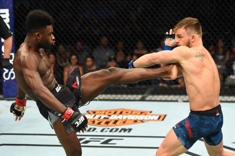 DALLAS, TX - SEPTEMBER 08: (L-R) Aljamain Sterling kicks Cody Stamann in their bantamweight fight during the UFC 228 event at American Airlines Center on September 8, 2018 in Dallas, Texas. (Photo by Josh Hedges/Zuffa LLC/Zuffa LLC via Getty Images)