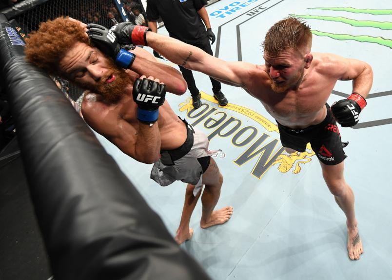 Matt Frevola punches Luis Pena of Italy in their lightweight bout during the UFC Fight Night event at Amalie Arena on October 12, 2019 in Tampa, Florida. (Photo by Josh Hedges/Zuffa LLC)