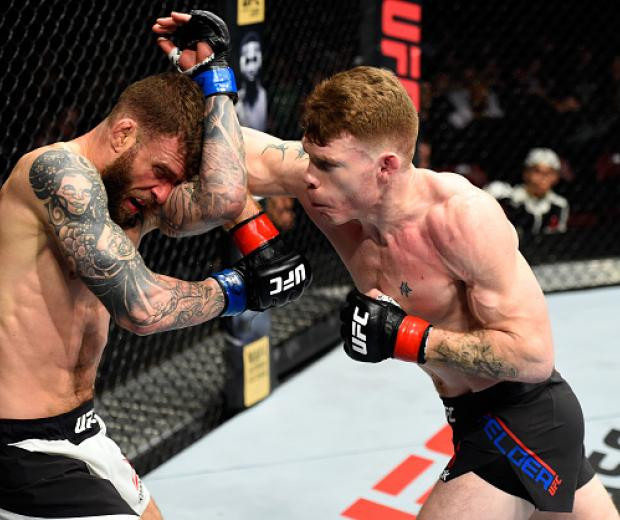 HALIFAX, NS - FEBRUARY 19:  (R-L) Paul Felder lands an elbow to the head of Alessandro Ricci of Canada in their lightweight fight during the UFC Fight Night event inside the Scotiabank Centre on February 19, 2017 in Halifax, Nova Scotia, Canada. (Photo by