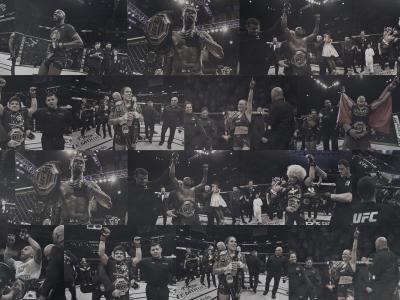 UFC Champion Collage