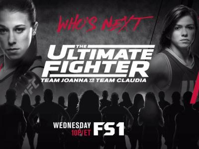 the ultimate fighter 23